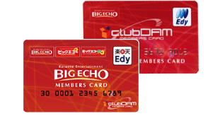 ビッグエコー カード