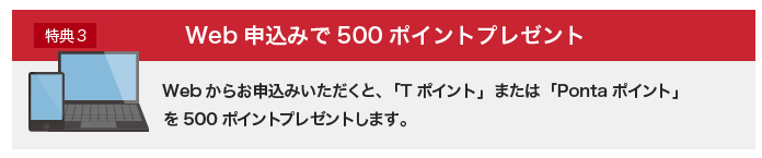 東京電力プレミアムプラン web 申し込みポイント
